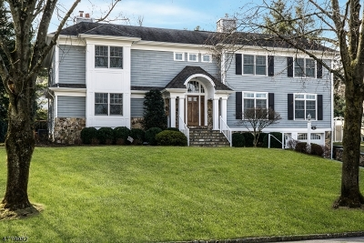 Chatham Twp Single Family Home For Sale: 8 Runnymede Rd