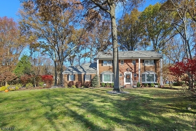 Scotch Plains Twp. Single Family Home For Sale: 11 Briarcliffe Dr