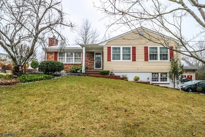 Raritan Twp. Single Family Home For Sale: 80 Clover Hill Rd