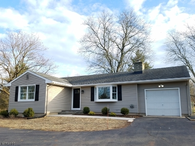 Bridgewater Twp. Single Family Home For Sale: 516 Garretson Road