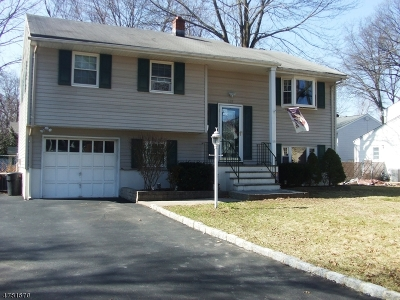 Parsippany-Troy Hills Twp. Single Family Home For Sale: 131 Harrison Rd