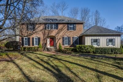 Bernards Twp. Single Family Home For Sale: 5 Stacy Ln