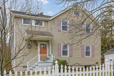 WestField Single Family Home For Sale: 342 Brightwood Ave