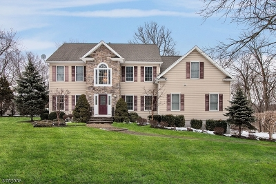 Florham Park Boro Single Family Home For Sale: 38 Elm St