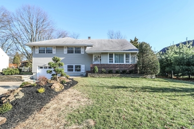 Springfield Single Family Home For Sale: 29 Becker Rd