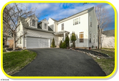 Bernards Twp. Single Family Home For Sale: 23 Honeyman Road
