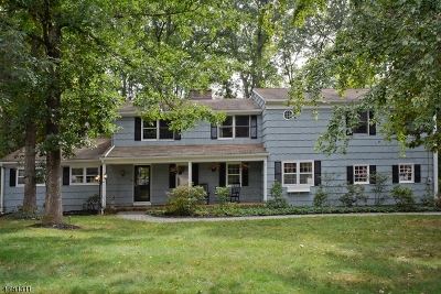 Morris Plains Boro Single Family Home For Sale: 21 Parker Dr