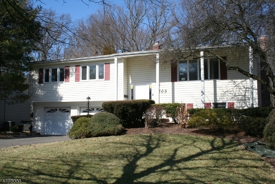 Berkeley Heights Single Family Home For Sale: 203 River Bend Rd