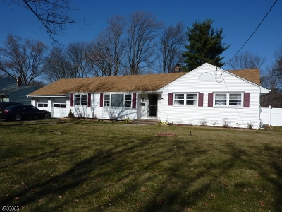 Parsippany-Troy Hills Twp. Single Family Home For Sale: 15 Trojan Ave