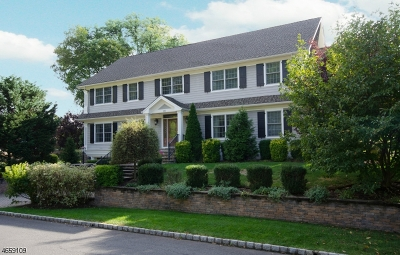 WestField Single Family Home For Sale: 860 Standish Ave