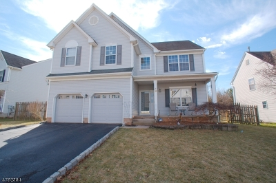 Bridgewater Twp. Single Family Home For Sale: 18 Reinhart Way