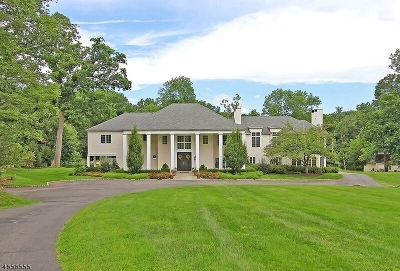 Bernardsville Boro Single Family Home For Sale: 260 Mendham Rd