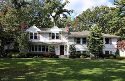 Essex County, Morris County, Union County Rental For Rent: 205 Long Hill Dr