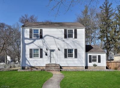 Livingston Twp. Single Family Home For Sale: 480 S Livingston Ave