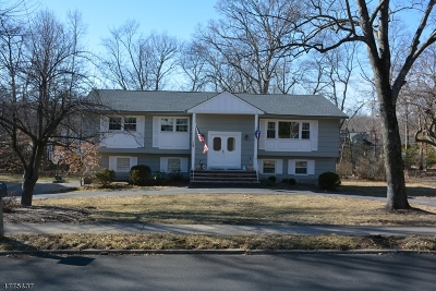 Montville Twp. Single Family Home For Sale: 11 Brittany Rd