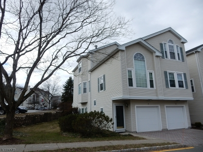 Morris Twp. Condo/Townhouse Active Under Contract: 41 Witherspoon Ct