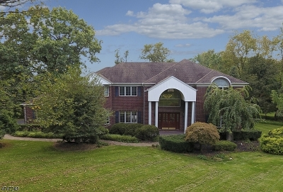 Clinton Twp. Single Family Home For Sale: 4 Blue Cliff Dr