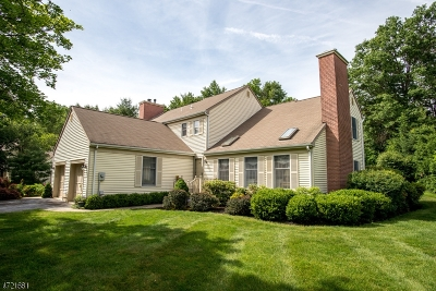 Bernards Twp. Single Family Home For Sale: 96 Commonwealth Dr