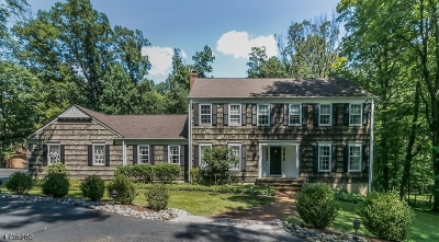 WATCHUNG Single Family Home For Sale: 601 Phillip Ln