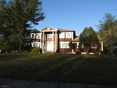 Montville Twp. Single Family Home For Sale: 18 Arthur Pl