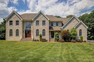 Warren Twp. Single Family Home For Sale: 1a Top Of The World Way