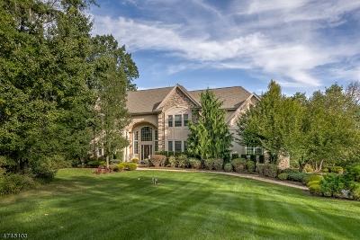 Bernards Twp. Single Family Home For Sale: 108 Darren Dr
