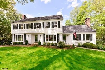 Morris Twp. Single Family Home For Sale: 41 Hilltop Cir