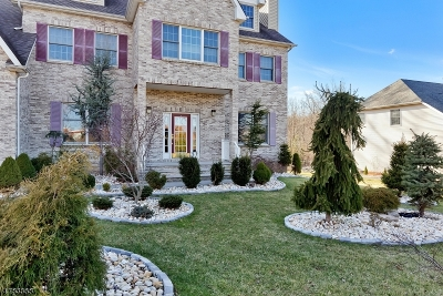 Edison Twp. Single Family Home For Sale: 6 Milford Ct