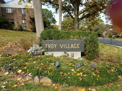 Springfield Condo/Townhouse For Sale: 107-D Troy Dr Bldg 15