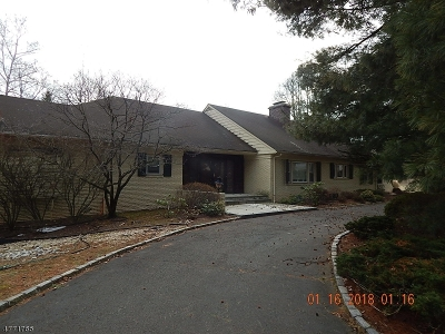 Scotch Plains Twp. Single Family Home For Sale: 1120 Donamy Gln