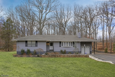 Warren Twp. Single Family Home For Sale: 67 Old Stirling Road