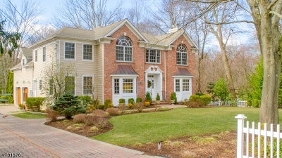 Chatham Twp Single Family Home For Sale: 243 Southern Blvd