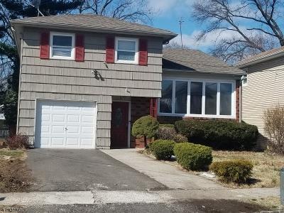 HILLSIDE Single Family Home For Sale: 1024 Schleifer Rd