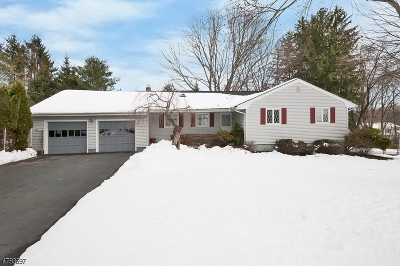Montville Twp. Single Family Home For Sale: 8 Longview Dr