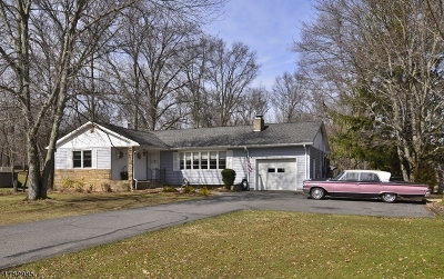 Raritan Twp. Single Family Home For Sale: 3 Meadow Ln