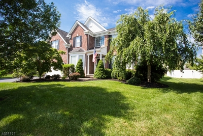 Clinton Twp. Single Family Home For Sale: 12 Crestview Dr