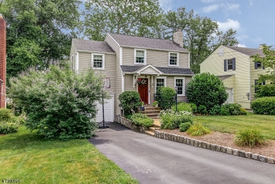 Chatham Boro Single Family Home For Sale: 157 Hillside Ave