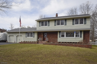 Parsippany-Troy Hills Twp. Single Family Home For Sale: 26 South Roosevelt Ave