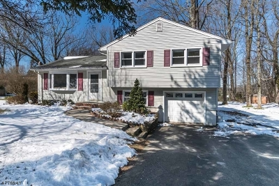 Randolph Twp. Single Family Home For Sale: 38 Sanford Dr