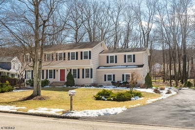 Randolph Twp. Single Family Home For Sale: 102 Meadow Brook Rd