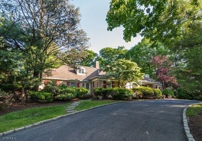 Millburn Twp. Single Family Home For Sale: 10 Sparta Rd