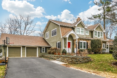 Chatham Twp Single Family Home For Sale: 12 Pine St