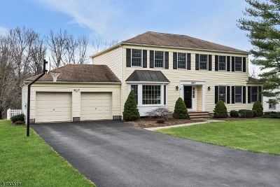 Long Hill Twp Single Family Home For Sale: 597 Heritage Rd