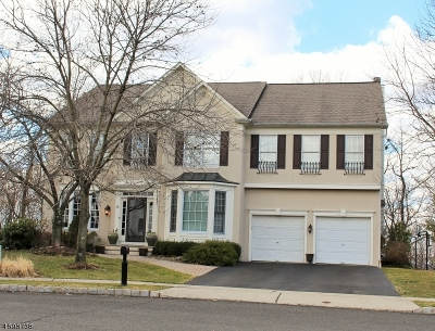 Bedminster Twp. NJ Single Family Home For Sale: $949,900