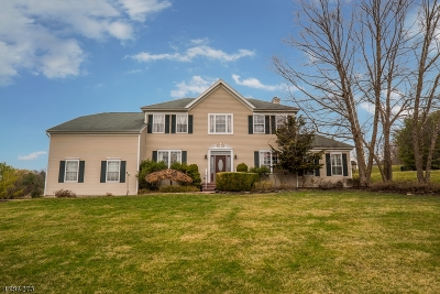 Raritan Twp. Single Family Home For Sale: 9 Cornet Way