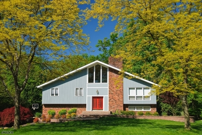 Randolph Twp. Single Family Home For Sale: 12 Rickland Dr