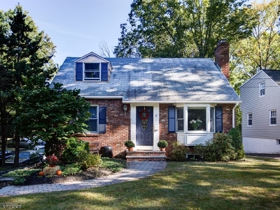 Chatham Boro Single Family Home For Sale: 8 Harding St