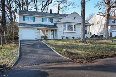Scotch Plains Twp. Single Family Home For Sale: 2051 Maple View Ct