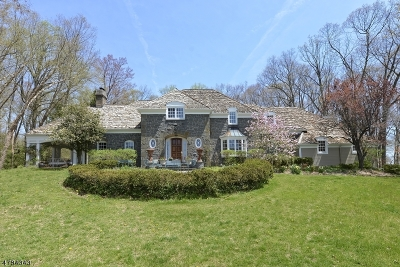 Tewksbury Twp. Single Family Home For Sale: 30 Cold Springs Rd