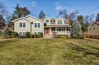 Berkeley Heights Single Family Home For Sale: 26 Gallinson Dr